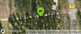 Ølgryde Plantage Hundeskov