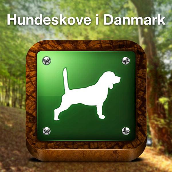 Find En Hundeskov I Dit Naer Omrade Hundeskove I Danmark